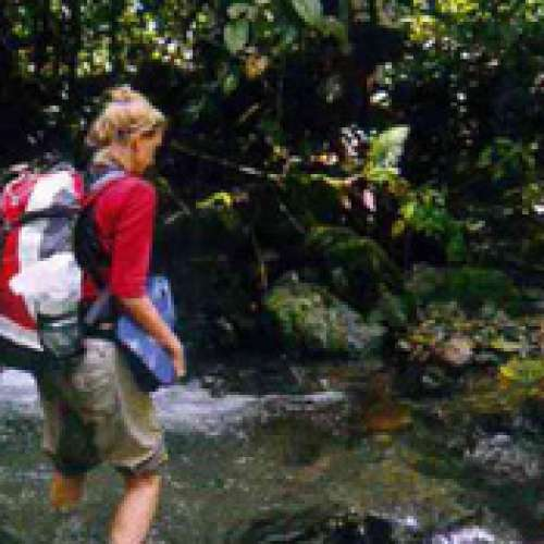 Female Essentials: What to Bring to Indonesian Jungle
